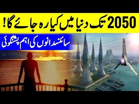 2050 Tk Rahny Wali Cheezein Aur Us k Bad Wali Dekhein   Yellow