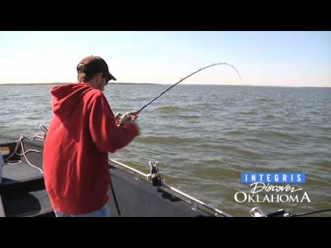 Discover oklahoma texoma striper fishing youtube for Texoma fishing license
