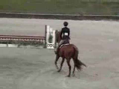 Nikki - handy hunter round, HITS Saugerties Video