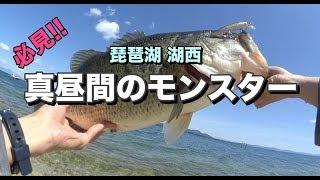 [琵琶湖バス釣り] 真昼間のモンスター