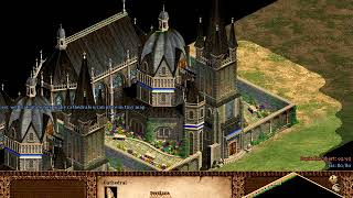 AGE OF EMPIRES 2 AoE2 - HOW MANY CATHEDRALS YOU CAN PLACE IN TINY MAP