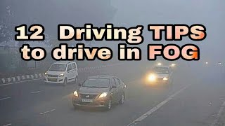 धुंध / कोहरे में कार चलाते हुए किन चीजों का ध्यान रखें