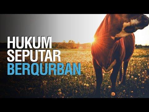 Hukum Seputar Berqurban - Ustadz Ahmad Zainuddin Al Banjary