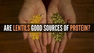 Are Dals/Lentils/Beans Good Sources of Protein?