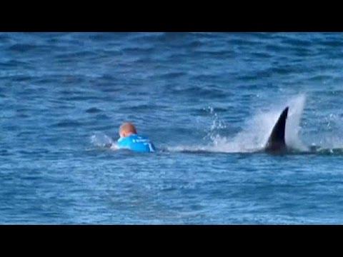 Акула против серфингиста: Мик Фэннинг победил