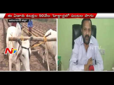 Adilabad Farmers Are Busy With Cultivation In Kharif Season || NTV