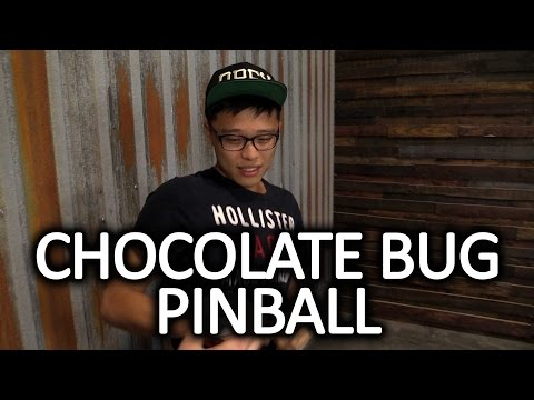 Bug Eating Pinball Challenge