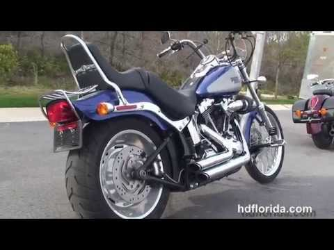 Used 2009 Harley Davidson Softail Custom Motorcycles for sale - Bradenton, FL
