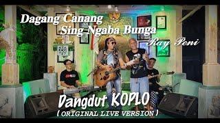 Download lagu RAY PENI - DAGANG CANANG SING NGABA BUNGA KOPLO (Original Live Version)