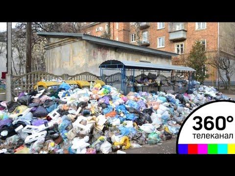 Ядрово: мусорные горы начали расти на улицах самого Волоколамска