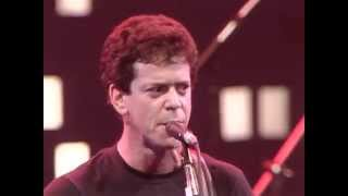 Watch Lou Reed Martial Law video