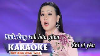 Đừng Trách Em Tội Nghiệp (Karaoke) Lưu Ánh Loan