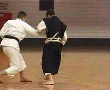 Demonstration Of Shorinji Kempo Image 1