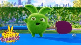 Sunny Bunnies | SUNNY BUNNIES - TABLE TENNIS | Cartoons For Children | Funny Cartoons For Children