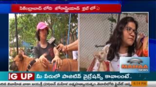 Huge Response On Dog VaccinationandDog Adoption|Zoroastrian Club|Secundrabad|Mahaa News