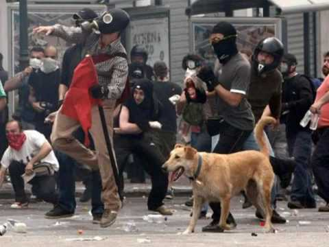 Lukánikos, the riot dog!