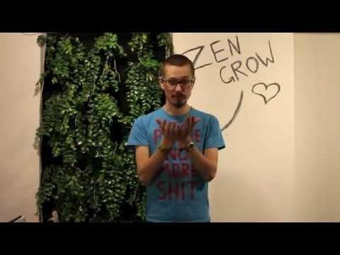 "Boomstarter - книга ""Зелёный драйвер"""