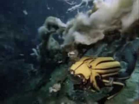 The Water Planet - The Undersea World of Jacques Cousteau