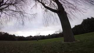 Willow - FPV practice Lumenier QAV210
