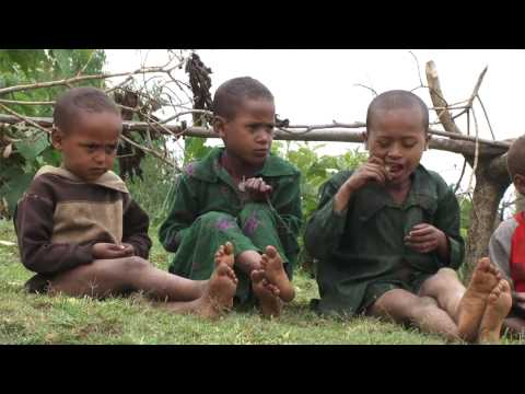 1 Million Trees for Ethiopia // EARTH DAY UPDATE