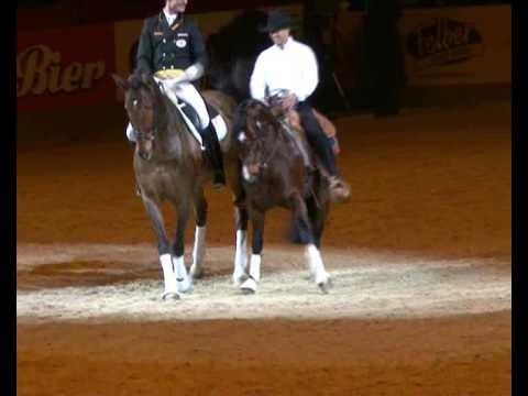 Fest der Pferde 2008: Klassik trifft western Smart Rattle Snake und Lausbub