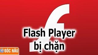 Kích hoạt lại Flash player khi bị chặn
