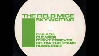 Watch Field Mice Below The Stars video