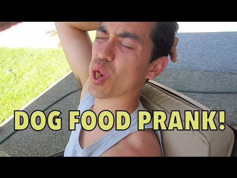 DOG FOOD PRANK! - July 12, 2014 - itsjudyslife daily vlog