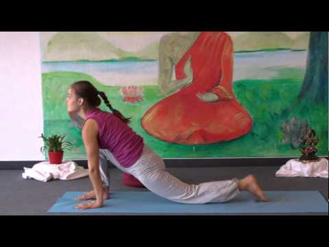 Intermediate Yoga Vidya  Class 20 Minutes