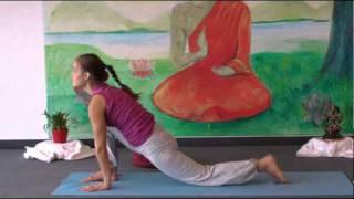 Intermediate Yoga Vidya  Class 20 Minutes