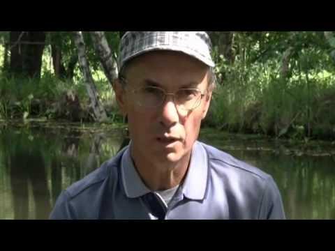 евгений середа поплавочный практикум ловля леща