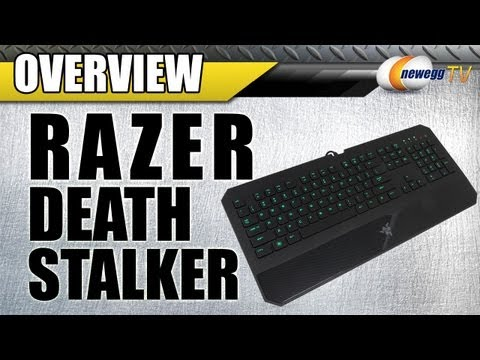 Newegg TV: Razer DeathStalker Wired Gaming Keyboard Overview