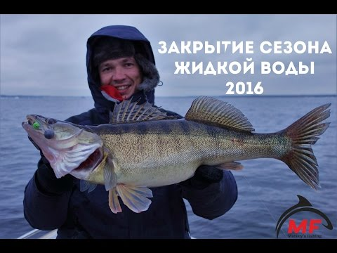 андрей рыбалка найти