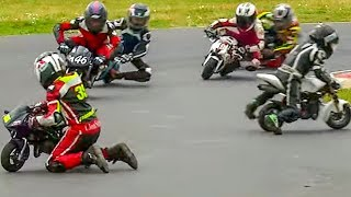 Moto GP for Kids from Age of 6: 2017 British Minibikes Championship: Rd 5, Minimoto Pro