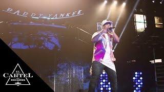 Daddy Yankee THEKINGDOM Parte 3