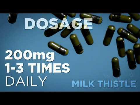 Milk Thistle Guide - Bodybuilding.com
