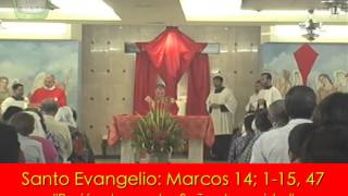 Domingo de Ramos 29 de Marzo de 2015 - 8:00 am
