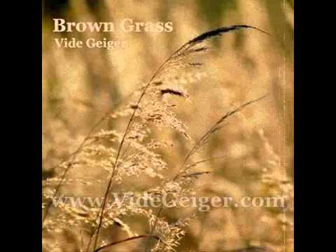 Vide Geiger - Brown Grass