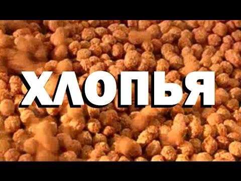 Галилео. Хлопья 🍲 Cereal