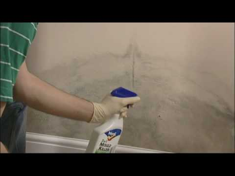 How to remove mould from walls and ceilings youtube for How to get mold off of walls in bathroom