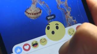 Mark Zuckerberg today we're launching a test of Reactions a more expressive Like button