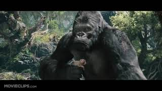 King Kong 2005   King Kong VS Khủng long bạo chúa T Rex Part 2