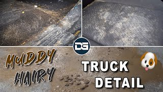 Complete Transformation of a Filthy Work Truck | Satisfying Car Detailing and Pet Hair Removal!