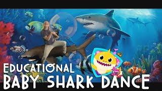 download lagu Baby Shark Dance - Educational Version Parody gratis