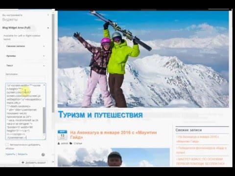 Вставка счетчика на Wordpress