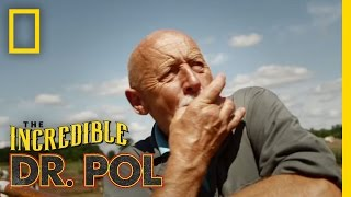 The Incredible Dr. Pol - Teaser | The Incredible Dr. Pol