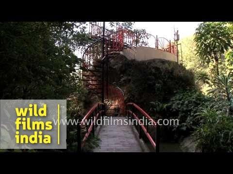 Solar panels at Banjhakri falls and energy park in Sikkim