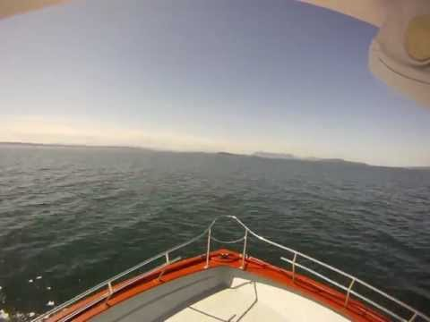 Western Prince Wildlife Cruise Time Lapse San Juan Islands