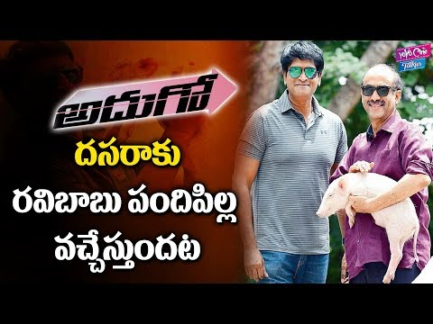 Ravi Babu Adugo Movie Release Date Confirmed | Suresh Babu | Telugu Movies | YOYO Cine Talkies