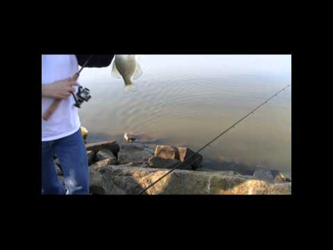 crappie fishing mosquito causeway 3.19,12.wmv